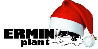 Ermin Plant Christmas